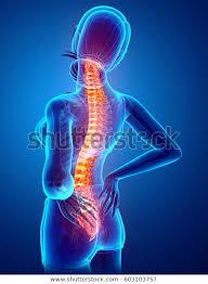 背中の痛みの施術法 宇治市大久保 宇治東洋鍼灸整骨院